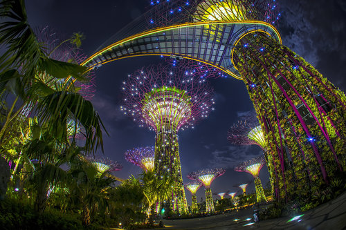 Gardens by the Bay Celebrates Success