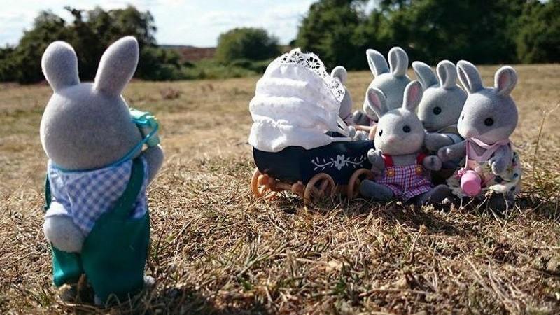 Behind the Scenes: Sylvanian Summer