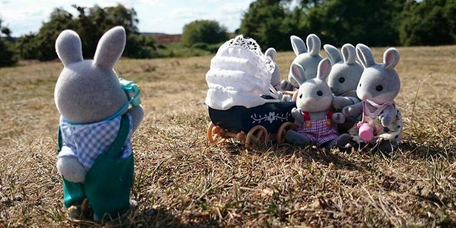 Behind the Scenes: Sylvanian Summer
