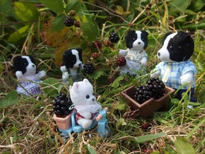 """Blackberry crumble tonight."" The Cedar Terrace third prize went to Rachael Scott"